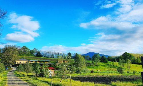 Agriturismo Albareto